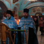 Молебен отца Паисия во Владимирском храме г.Мытищи